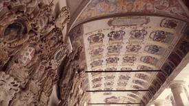 Thumbnail for entry 10 Reasons for studying in Padova