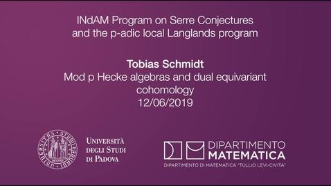Thumbnail for entry 4.8 Tobias Schmidt, Mod p Hecke algebras and dual equivariant cohomology, 12 June 2019, INdAM Program