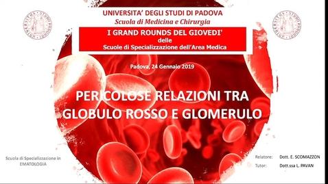 Thumbnail for entry Pericolose relazioni tra globulo rosso e glomerulo