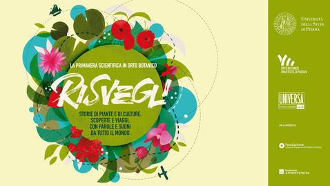 Thumbnail for entry Risvegli 2018