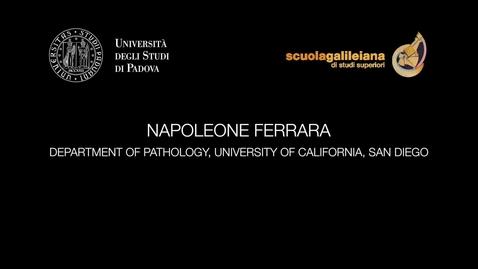 Thumbnail for entry NAPOLEONE FERRARA