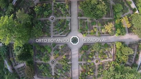 Thumbnail for entry Il volo dall'Orto Antico al Giardino della Biodiversità