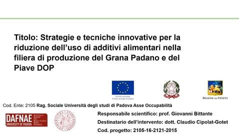 Thumbnail for entry 30sec_Strategie e tecniche innovative per la riduzione dell'uso di additivi alimentari nella filiera di produzione del Grana Padano e del Piave DOP_CIPOLATGOTET