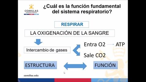 Miniatura para la entrada Educación para la salud y mejora de la función respiratoria en la era post-COVID 19