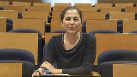 Miniatura para la entrada Dra. María José Castaño Reyero.  Asignatura: Globalización y movimientos transnacionales