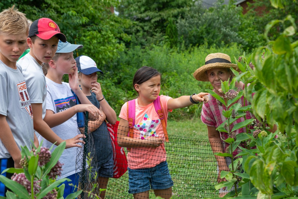 Kids learn about gardening, food prep at Family Food Fest camp