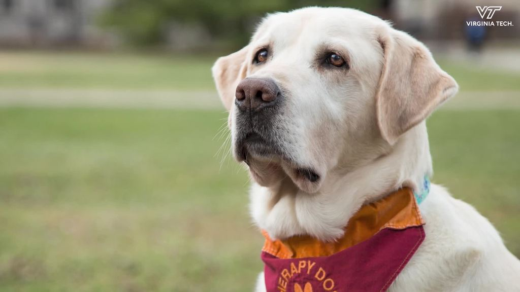Remembering Moose and a life dedicated to service
