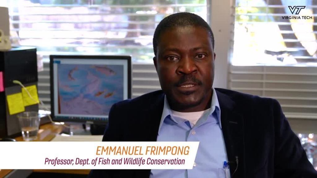 Conservation and biodiversity of fish and wildlife