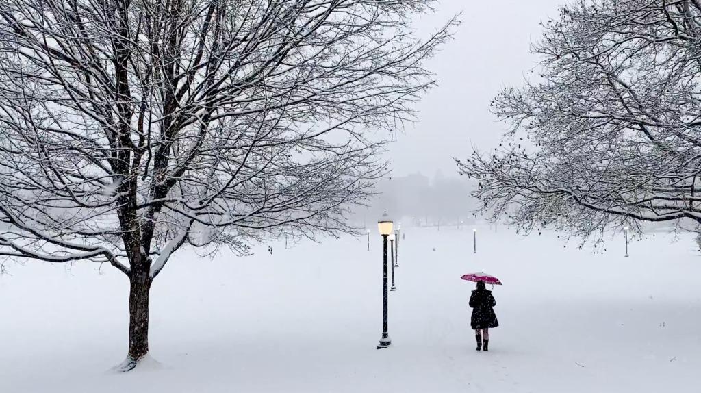 Blacksburg campus becomes a winter wonderland