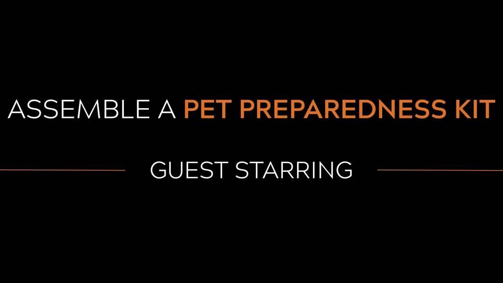 Assemble A Pet Preparedness Kit