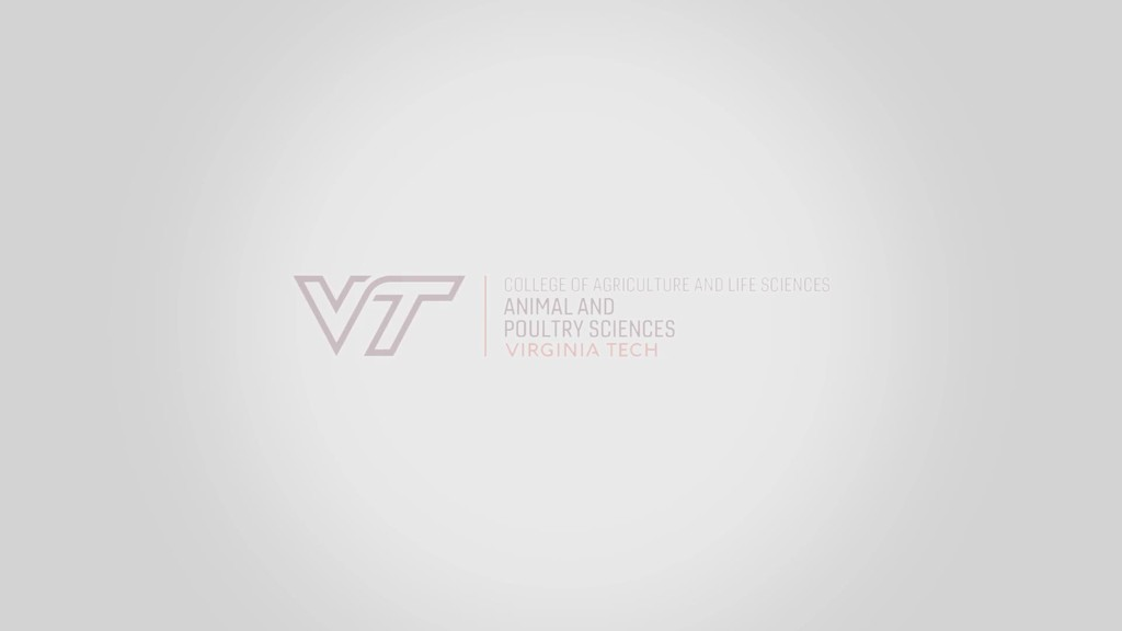 Virginia Tech Department of Animal and Poultry Sciences