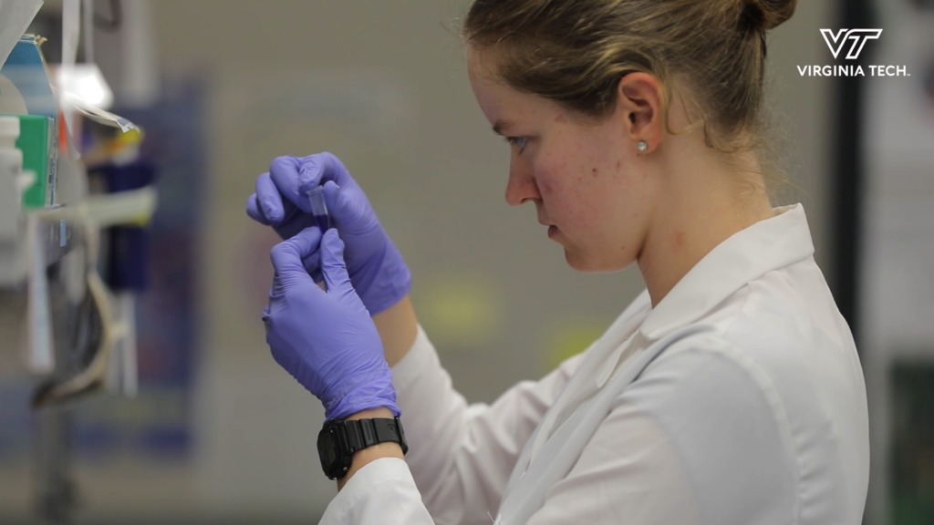 Researching how circadian rhythms influence cancer development