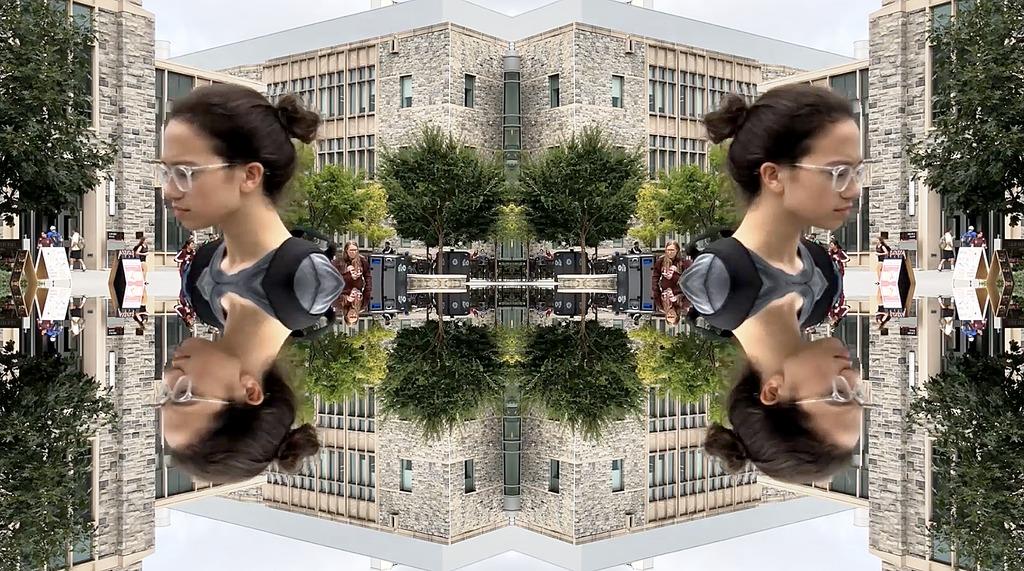 A kaleidoscopic view of Virginia Tech
