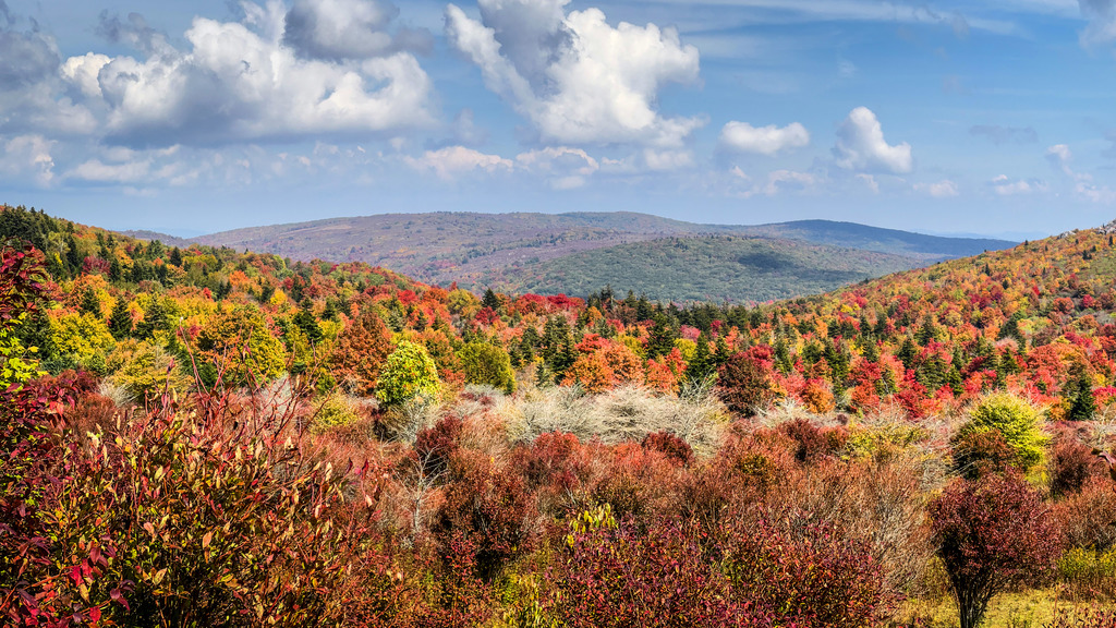 When to expect fall colors to peak