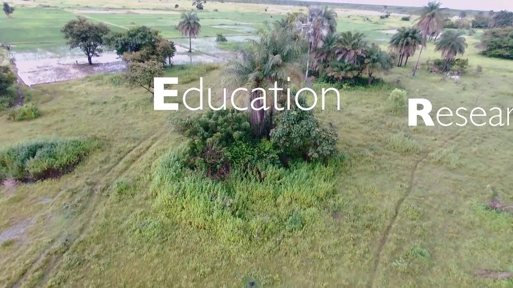 Virginia Tech has lasting impacts on Senegal's agriculture and education systems