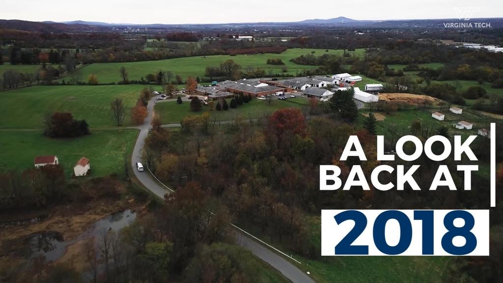 Equine Medical Center: A look back at 2018