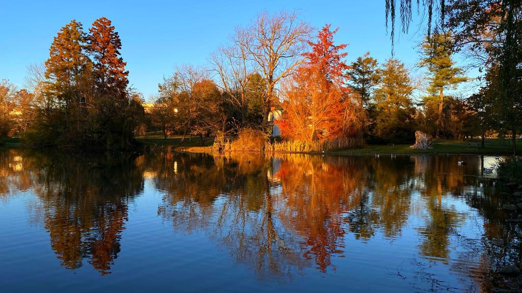 An autumn sunset at the Duck Pond
