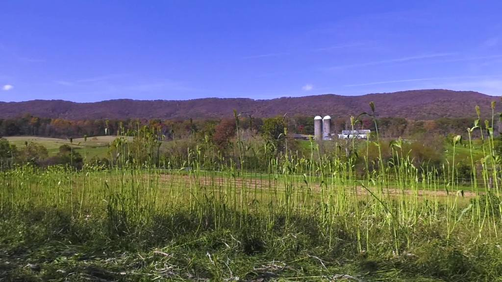Catawba Sustainability Center studies role that Appalachian custom may have in future of local farms