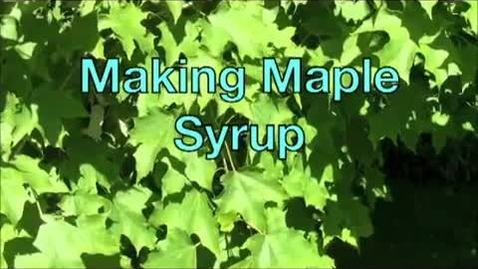 Making Maple Syrup with Matt Chagnon_ Associate Forestry Professor_ UNH Thompson