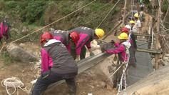 Building the WZQ Bridge
