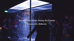 Beyond Perception: Seeing the Unseen