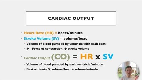 Thumbnail for entry Ch 18 VII - Cardiac Output
