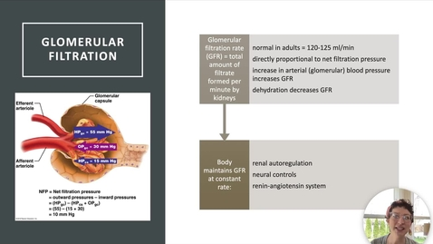 Thumbnail for entry Ch 25 IV - GFR Control