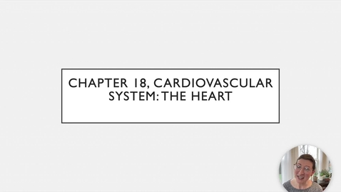 Thumbnail for entry Chapter 18 - Heart Anatomy