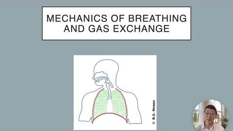 Thumbnail for entry Ch 22 IV - Respiratory Pressures