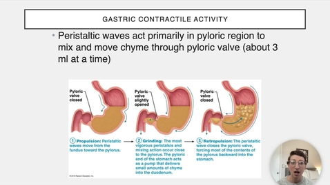 Thumbnail for entry Ch 23 VII - Gastric Contractions
