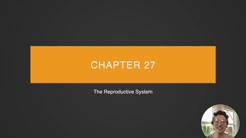 Thumbnail for entry Ch 27 I - Intro to the Reproductive System