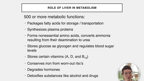 Thumbnail for entry Ch 24 XIV - Liver Metabolism