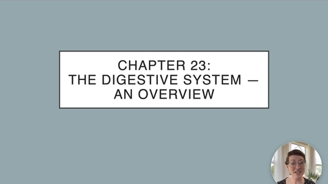 Thumbnail for entry Ch 23 I - Intro to the Digestive System