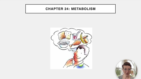 Thumbnail for entry Ch 24 I - Intro to Metabolism