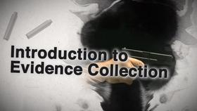 evidence collection procedures icev online