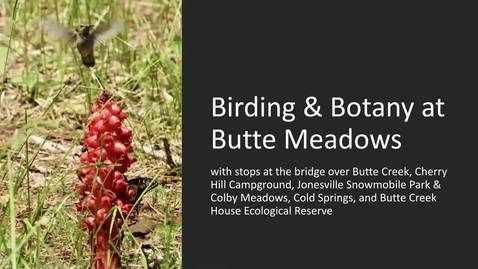 Thumbnail for entry Armchair Visit to Butte Meadows