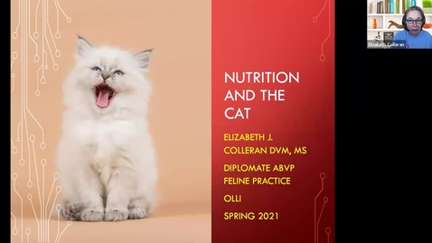 Thumbnail for entry New Cat Science:  Session 6