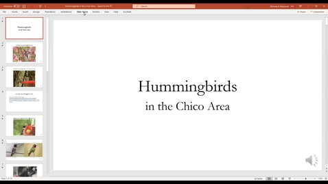 Thumbnail for entry Hummingbirds in the Chico Area