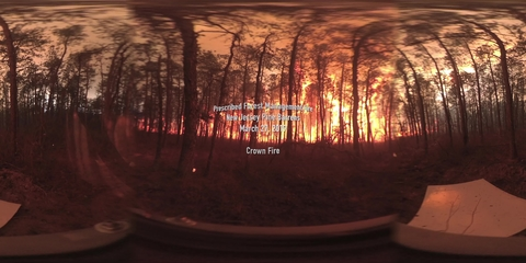 360° Video of Crown Fire during a Prescribed Burn in the New Jersey Pine Barrens on March 27, 2019 (Full Length)