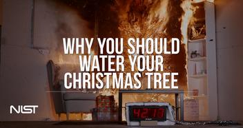 Christmas Tree On Fire.Christmas Tree Fire Watered Tree Vs Dry Tree