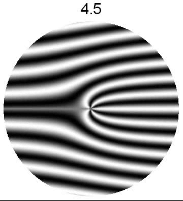 Neutron Holography 2