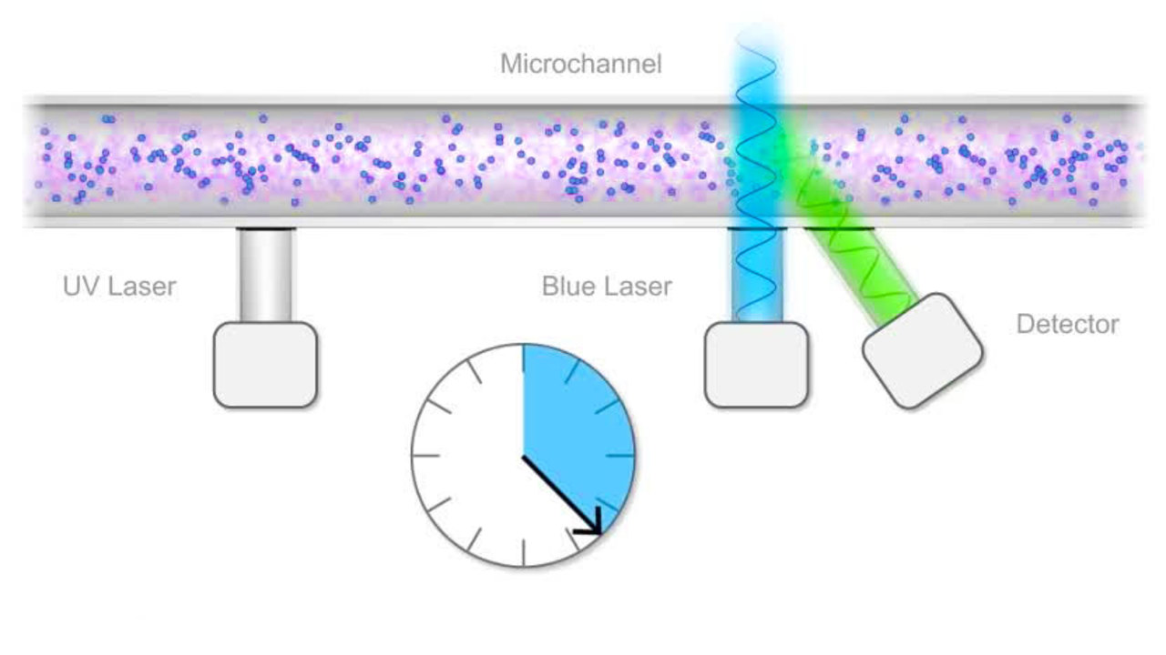 Measuring Flow Rate with Fluorescence