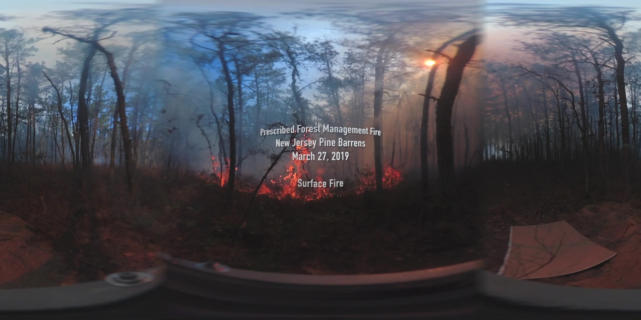 360° Video of Surface Fire during a Prescribed Burn in the New Jersey Pine Barrens on March 27, 2019 (Full Length)