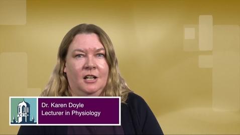 Karen Doyle Teaching Expert