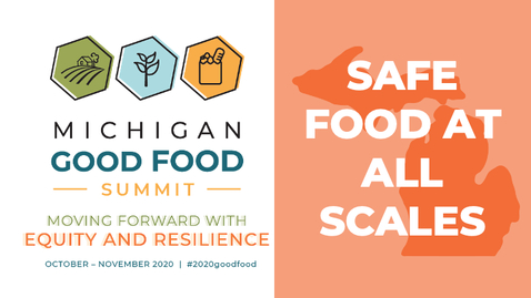 Thumbnail for entry 2020 Summit - Safe Food at All Scales
