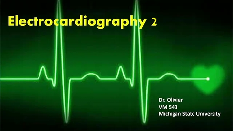 Thumbnail for entry VM 565-ECGs2 (oldEcho360_Lect9)