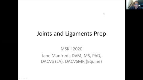 Thumbnail for entry VM 516-Joint and Ligament-Manfredi