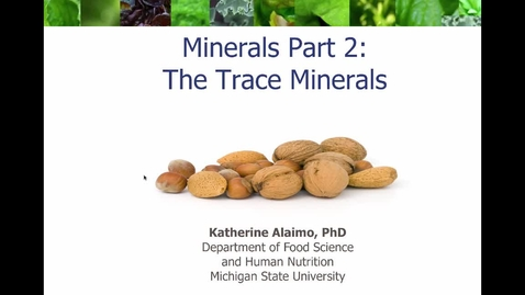 Thumbnail for entry Mini Lecture 5.3 - Minerals Part 2