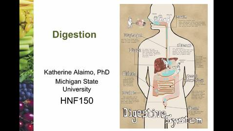 Thumbnail for entry Mini Lecture 2.1 - Digestion