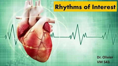 Thumbnail for entry VM 565-Mgmt_Common_Arrhythmias1 (oldEcho360_Lect10)